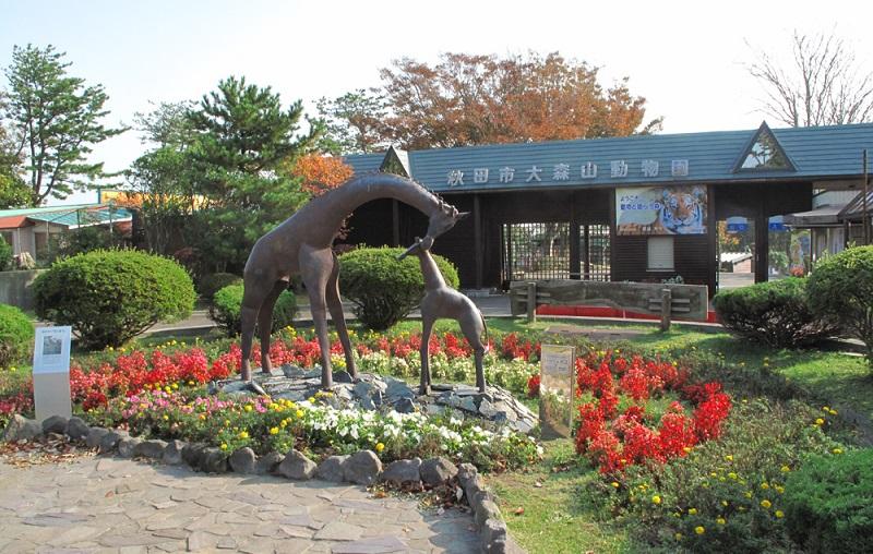 大森山動物園ミルヴェ